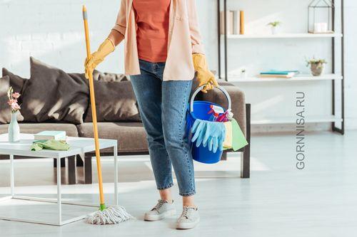 Вредные полезные привычки - https://gornnisa.ru/ - Ежедневная домашняя уборка