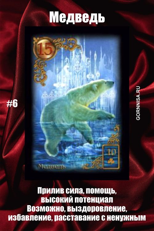 Карта #6 – Медведь - https://gornnisa.ru