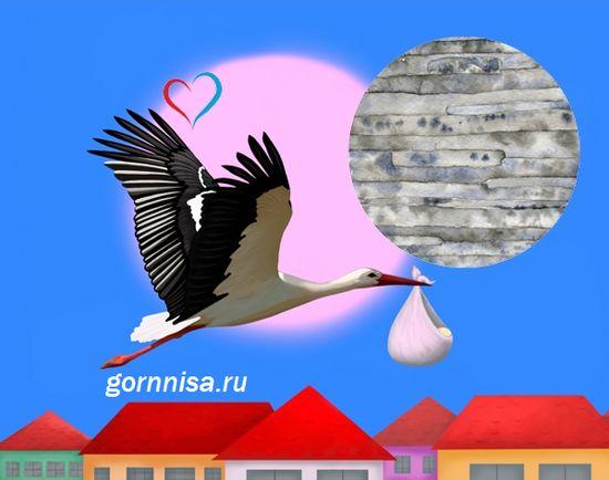 Основные черты личности по дате рождения  Металл https://gornnisa.ru/