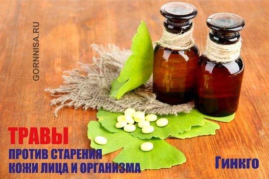 Гинкго - https://gornnisa.ru