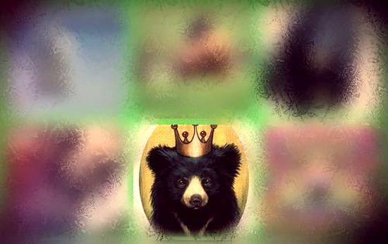 #5 Медведь в короне - https://gornnisa.ru/