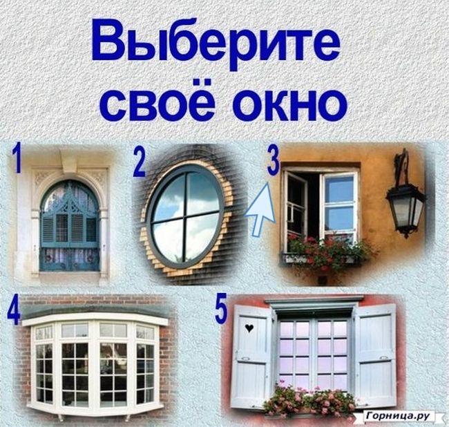 Окно 3 - https://gornnisa.ru