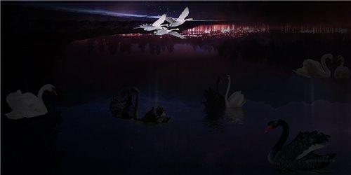 #6 - Летящие лебеди