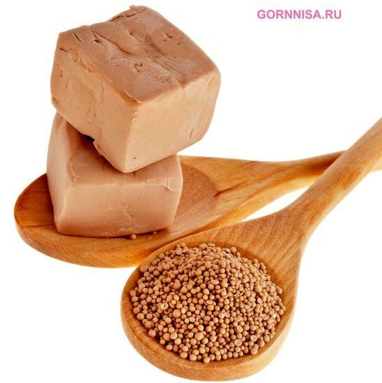 Пищевые дрожжи - https://gornnisa.ru/
