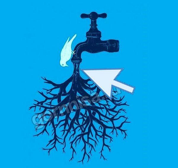 Вода - https://gornnisa.ru/