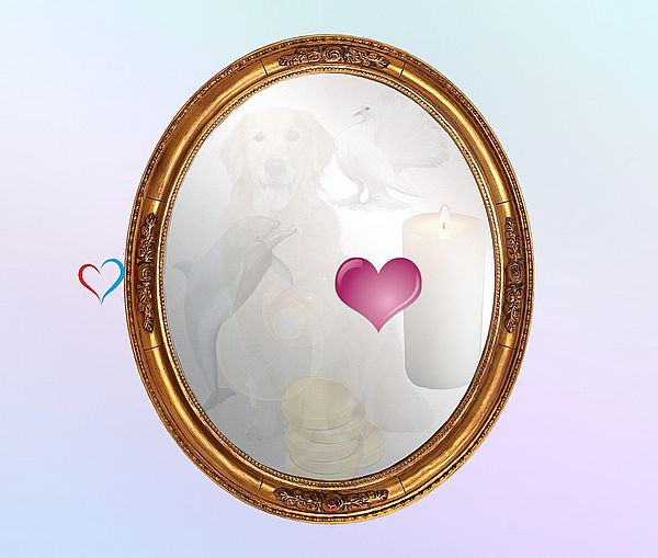 Сердце - https://gornnisa.ru/