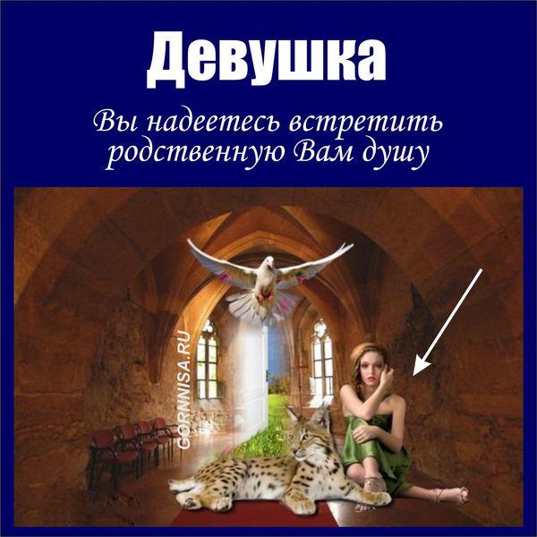 Девушка - https://gornnisa.ru