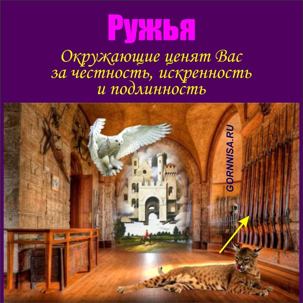 Ружья - https://gornnisa.ru/