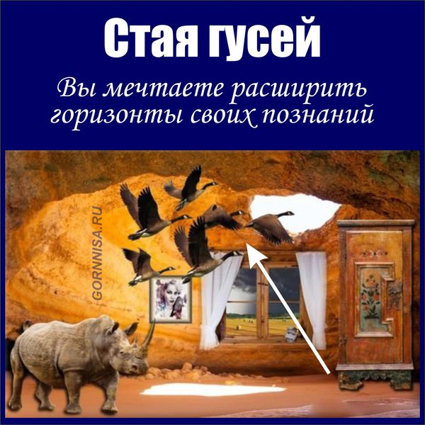 Стая гусей - https://gornnisa.ru/