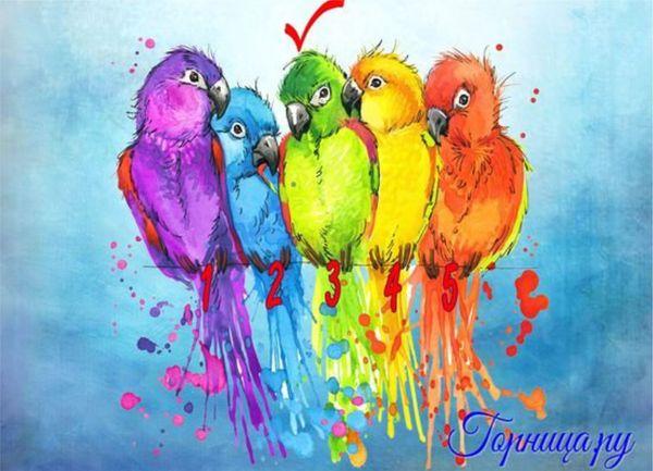 #3 Зеленый попугай