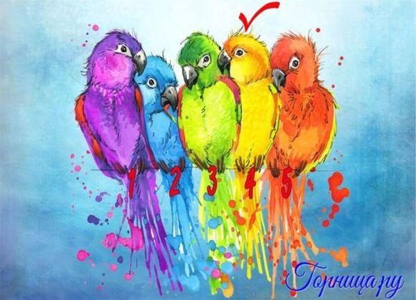 #4 Желтый попугай