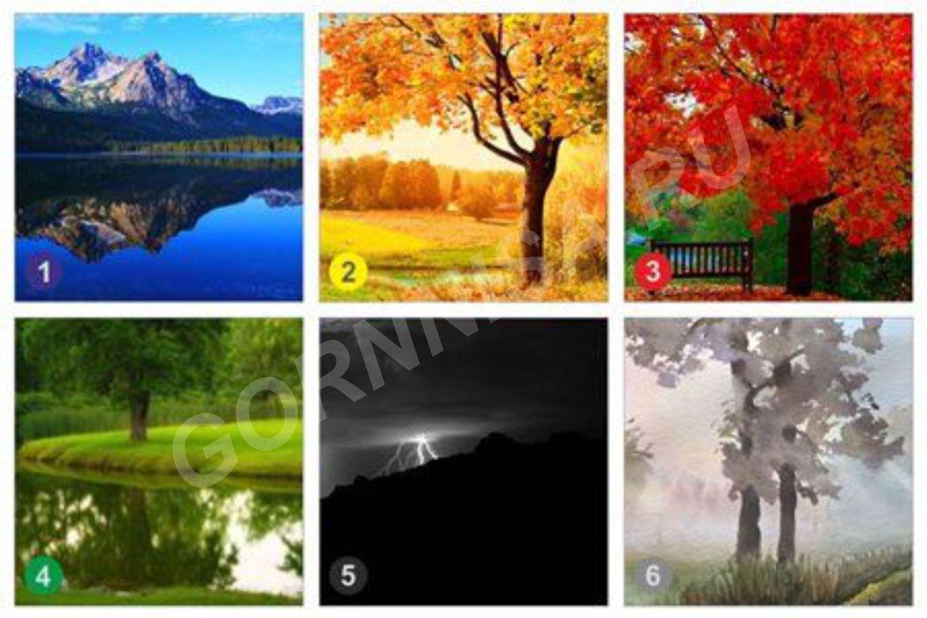 Тест - Выбранный Вами пейзаж как рекомендация к действию