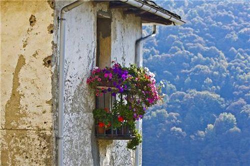#1 Балкон с цветами