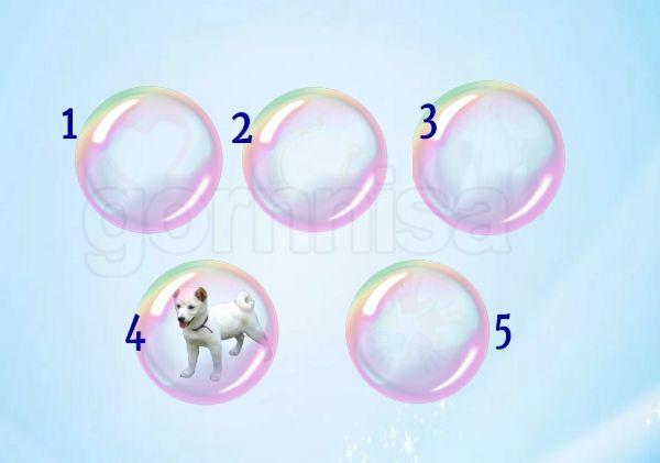 Мыльный пузырь 4
