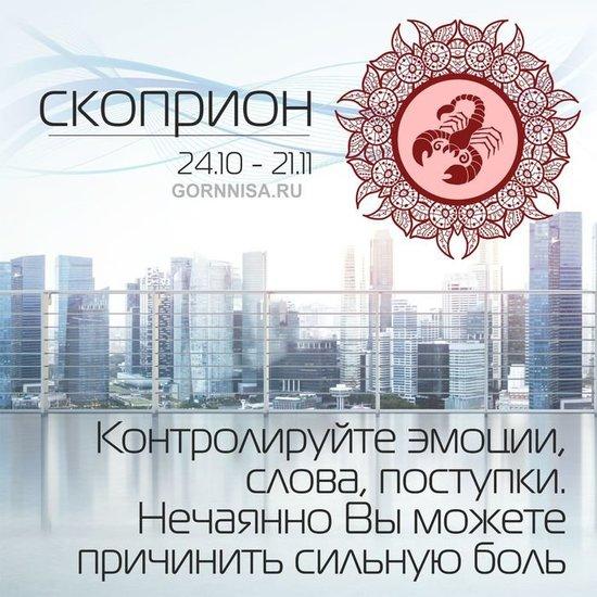 Скорпион 24.10 - 21.11