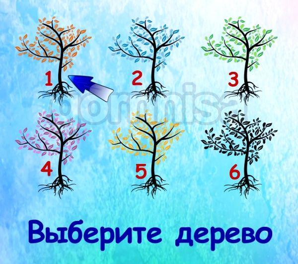 Тест на ваш потенциал - на какой вы стадии https://gornnisa.ru/ Дерево 1