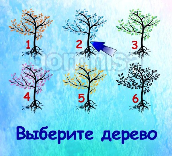 Тест на ваш потенциал - на какой вы стадии https://gornnisa.ru/ Дерево 2
