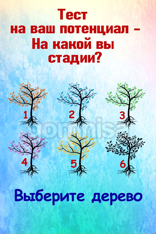 Тест на ваш потенциал - на какой вы стадии https://gornnisa.ru/