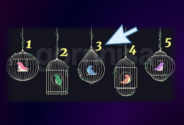 Клетка 3