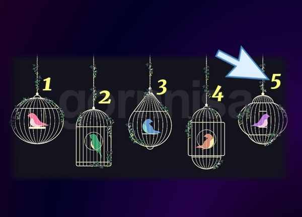 Клетка 5