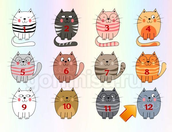 Котик 12