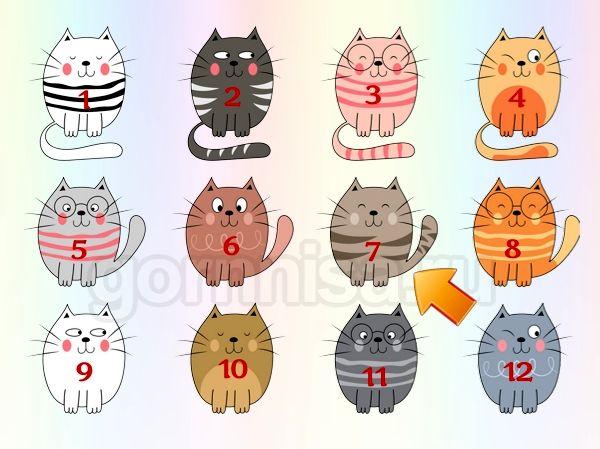 Котик 7