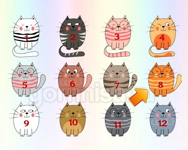 Котик 8