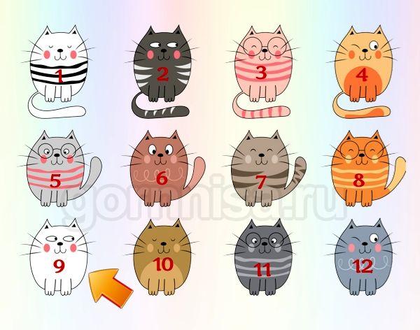 Котик 9
