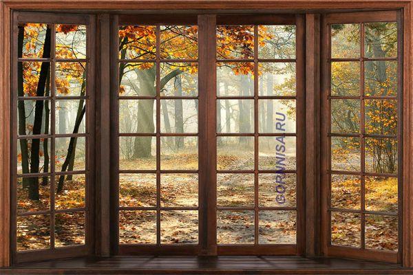 Окно #4