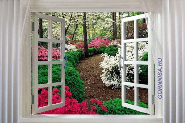Окно #5