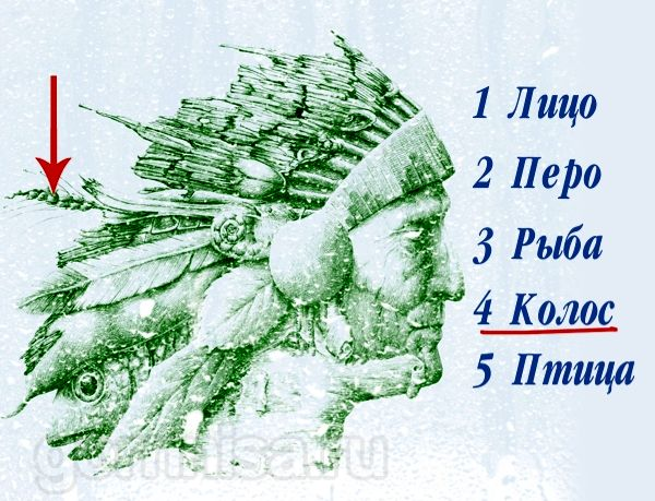 4 - Колос